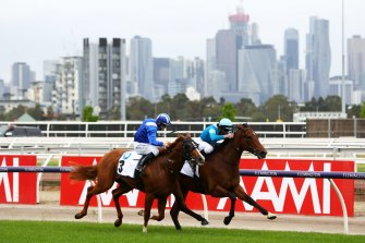 Crosshaven and Aysar went neck and neck in the Carbine Club Stakes last spring.