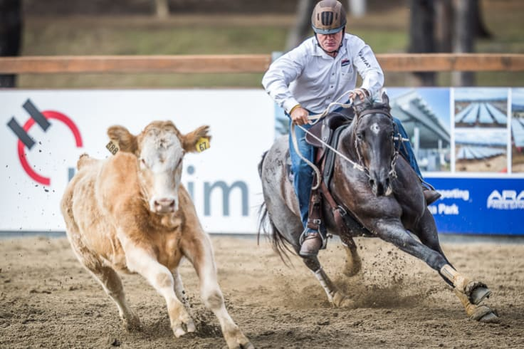 Pete Comiskey and his mare Paris in their winning ride at the World Championship Gold Buckle Campdraft.