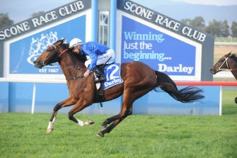 Racing returns to Scone on Friday with a seven-race card.