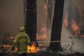 Firefighter Adam Brown from Fire & Rescue NSW protects properties near South Taree on Sunday.