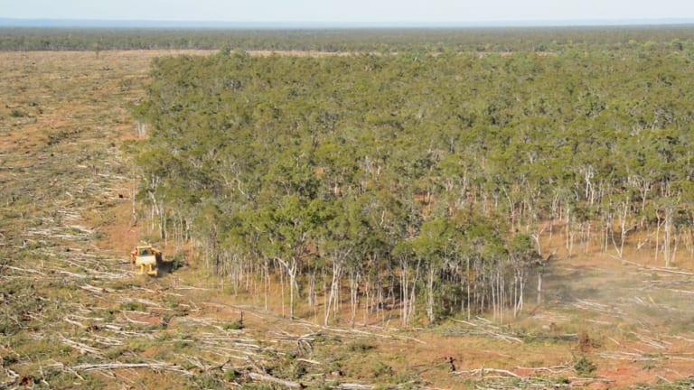 Land clearing in Queensland.