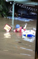 Wakeboard school owner and instructor Scott Kell at height of floodwaters at his Wisemans Ferry property.