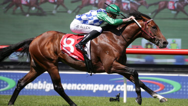 Fifty Stars, with jockey Ben Allen aboard, takes out the Araza Sandown Stakes.