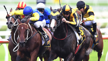 Record run: Trapeze Artist ridden by Tye England, right, in the closing stages of winning the All Aged Stakes.