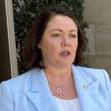 Liza Harvey announces resignation as Liberal leader.