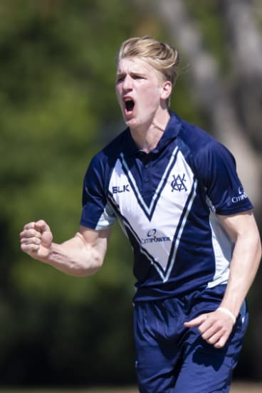 Will Sutherland takes a wicket for Victoria.