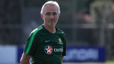 Much to do: Australian Socceroos coach Bert van Marwijk.
