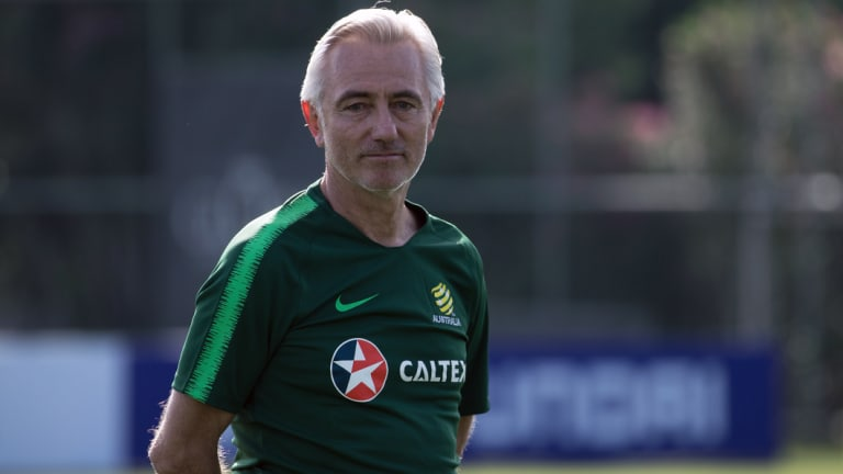 Much to do: Australian Socceroos coach Bert van Marwijk.