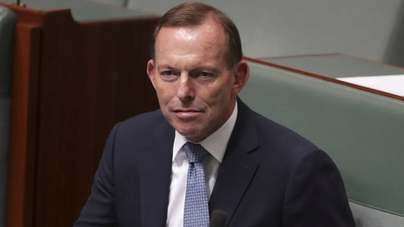 'You are embarrassing': Tony Abbott slapped down over Brexit claim