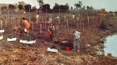 Volunteers build CERES Environment Park in the 1980s.