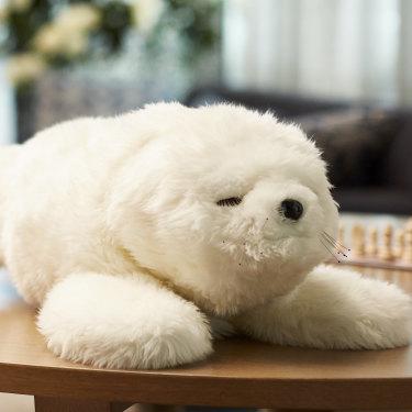 Paro, the robotic baby seal.
