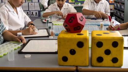 'Maths must change': Experts push for more problem-solving in maths curriculum