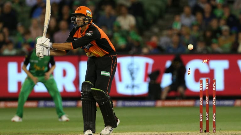 Knocked over: Ashton Agar of Perth Scorchers is bowled by Melbourne's star West Indies import Dwayne Bravo.