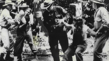 Protesters are led away by Queensland police from a blockade in the Daintree rainforest in 1984.