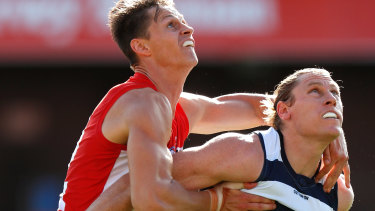 Cat fight: Mark Blicavs (right) helped spare Geelong's blushes with a timely spoil in the dying seconds of the match.