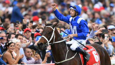 Winx after winning this year's Cox Plate.