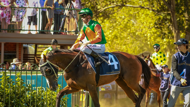 Race-by-race guide and tips for Dubbo on Sunday - Sydney Morning Herald