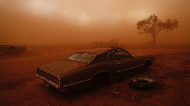 Nick Moir's award-winning photograph <i>Thunderbird in the Dust</i>