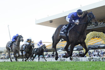 Shadow Hero is right in the market for the Australian Derby.