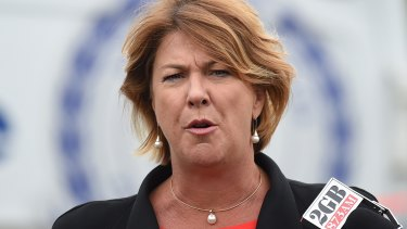 Roads minister Melinda Pavey said the fine could be tripled to bring it in line with other trespassing fines for bridges around the world.