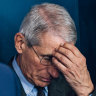 From 'crazy people' to Chinese co-operation: what Dr Fauci's emails reveal about his handling of the pandemic