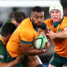 Wallabies and All Blacks remind world that style can also have substance