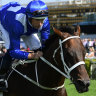Winx wins 33 in a row as she farewells Randwick and racing