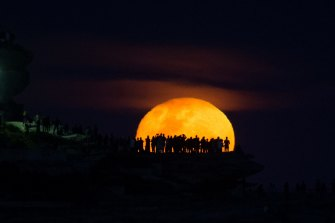 The moon rises above Ben Buckler point at Bondi, a day after the supermoon was obscured by clouds.