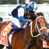 Michael Walker steers talented two-year-old Tagaloa to victory in the Blue Diamond Stakes at Caulfield.