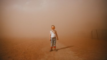 Sunday's rain was a welcome change after four-year-old Trader Paine endured a dust storm last weekend.