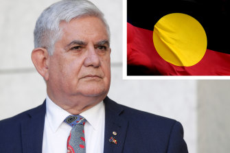 Indigenous Australians Minister Ken Wyatt did not support the ILSC's choice of CEO.