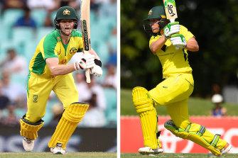 Australian star batters Steve Smith and Alyssa Healy.