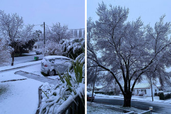 Snow blanketed Orange in NSW's Central West overnight.
