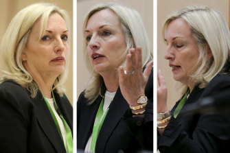 Christine Holgate pictured at a Senate estimates hearing in October last year, where she gave evidence about purchasing four Cartier watches, worth $20,000 in total, as a reward for employees who had secured a major banking deal for the postal service.