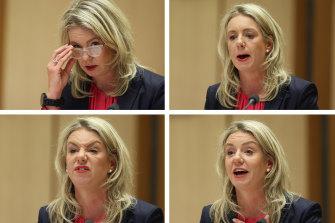 SenatorBridgetMcKenziefronted a fiery Senate hearing on the administration of sports grants.