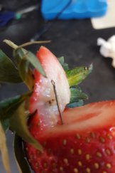 Angela Stevenson posted this photo of the contaminated strawberry she found on Wednesday night.