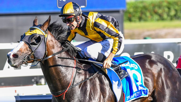 A win in The Everest will catapult Trapeze Artist to the highest earning Black Opal winner.