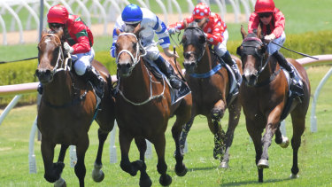 There are seven races on the card at Canterbury.