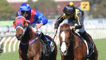 Ready: Nicci's Gold (right) wins at Rosehill last year.
