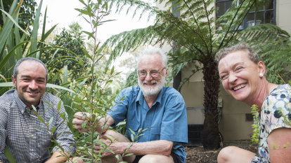Seed bank throws lifeline to fire-threatened species