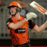 Starc out, bolter named for India
