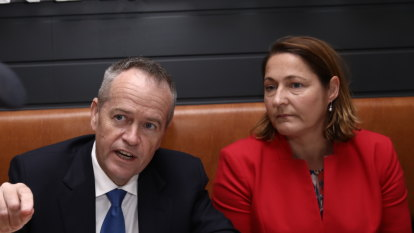 'We've just kept going and going': the secret behind Labor's only gain