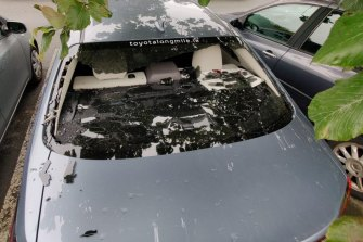 O'Brien's back window after his monster six in Dublin.
