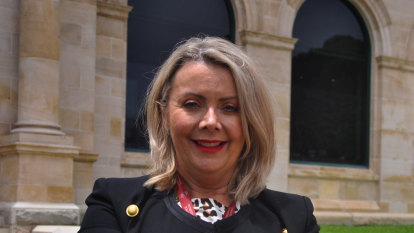 WA Nationals MP claims sexual assault allegations were used in 'slut-shaming' smear campaign