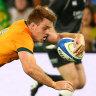 Rugby Championship 2021 LIVE: Wallabies thump Pumas, Springboks stun All Blacks