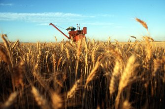 A strong cropping outlook should see demand rise for Elders' rural products division.