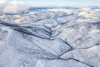 The Kosciuszko alpine area after the Black Summer fires.