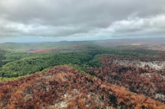 Evaluation of the fire's impacts on the unique island ecosystem, including tropical rainforests, ancient dune systems and protected species including dingoes, is ongoing.