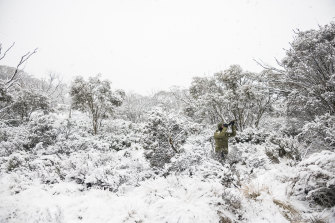 Ecologist and photographer Charles Davis taking photos of wildlife in the snow near Sponars, a proposed site for development.