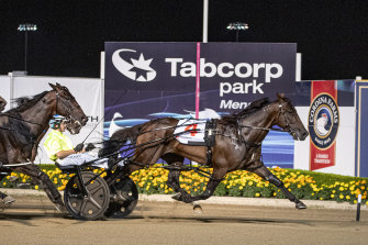 King Of Swing takes out last year's Miracle Mile at Menangle.  He is an odds-on favourite to defend the title on Saturday.